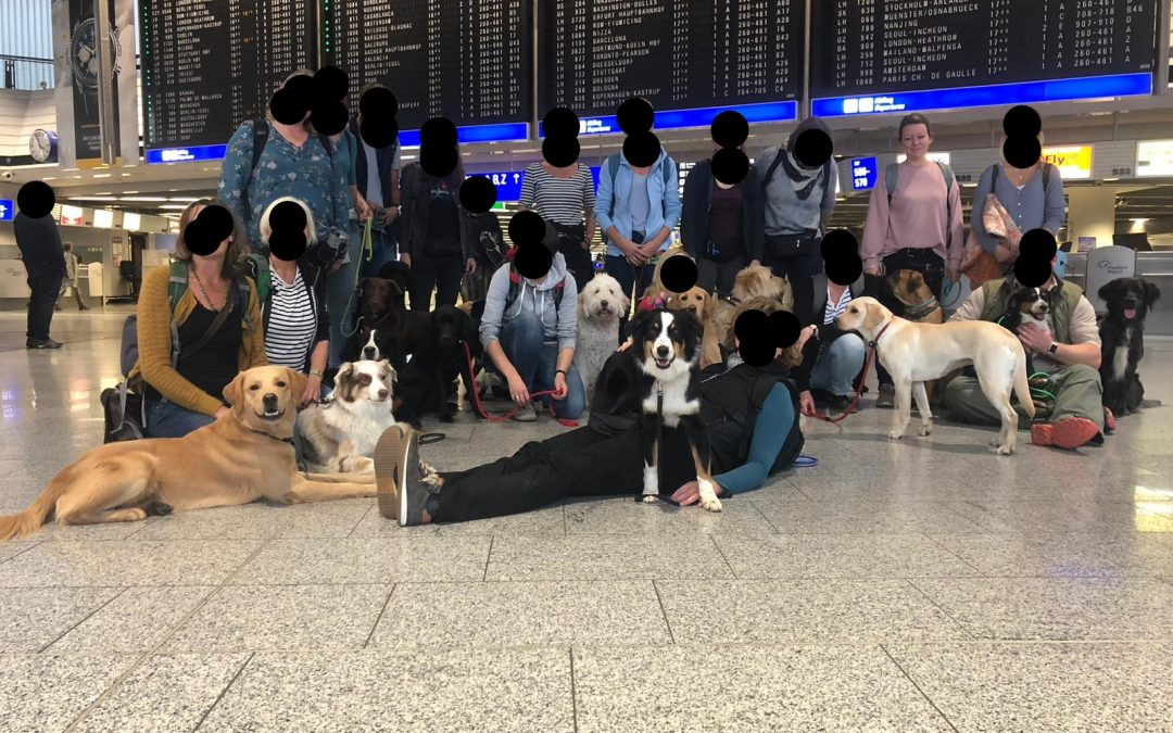Zwischenprüfung Frankfurt Flughafen